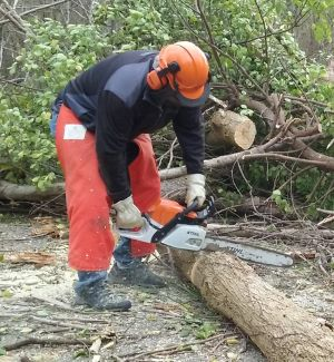chainsaw use2